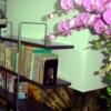 八本文化教育的中文教學理念