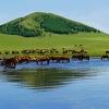 新疆阿勒泰喀納斯@秋季旅遊