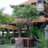 Bebek bengil@峇里島(Bali)