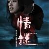 情謎(The Second Woman)